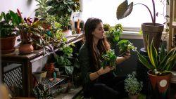 Fan van een urban jungle? Dit zijn de beste plantfluencers om te volgen op Instagram