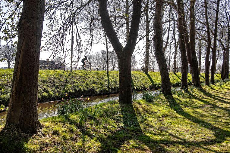 Een fietser langs de Amstel op een zonnige lentedag. Beeld Guus Dubbelman / de Volkskrant
