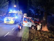Twee jonge kinderen en vrouw gewond na aanrijding met boom op De Poel in Monster