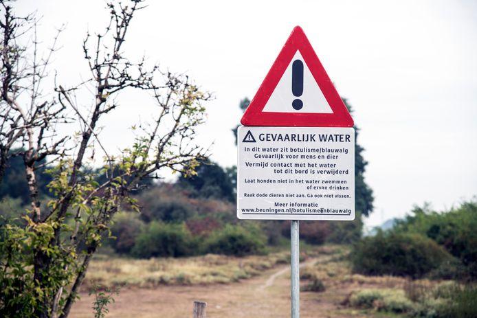 Het Schone Oosten, konikpaarden drinken uit Grindgat Weurt waar botulisme en blauwalg aanwezig is.