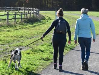 """Politie benadrukt: """"Honden moeten aan de leiband tijdens een wandeling"""""""