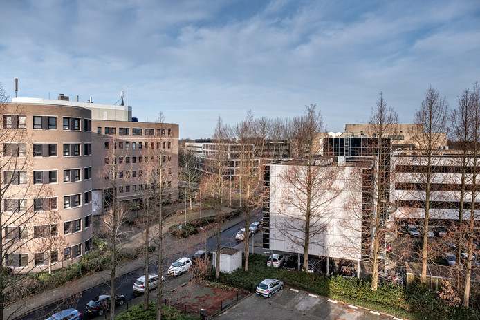 De kantoren op De Hoef, stammend uit begin jaren 90, lijken gegoten uit dezelfde mal.