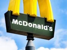 Komst KFC en McDonalds en 40 meter hoge reclamezuil langs A4 vallen niet goed bij Bergse gemeenteraad