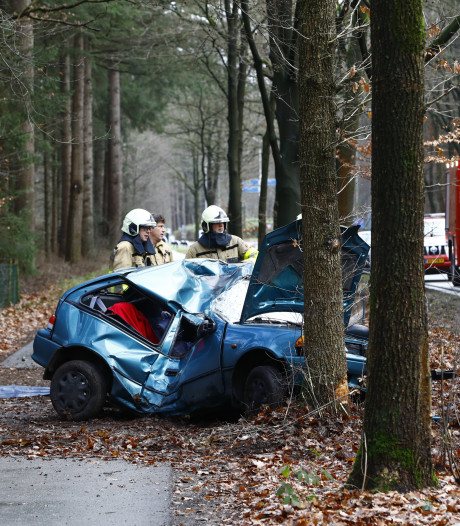 Jonge vrouw klapt met auto tegen boom bij Epe