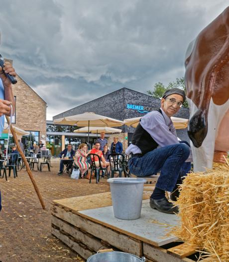 Koeien melken en kraampjes kijken op de jaarmarkt in Ulicoten