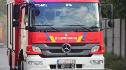 Brand bij recuperatiebedrijf Willems door verwerken van autowrak