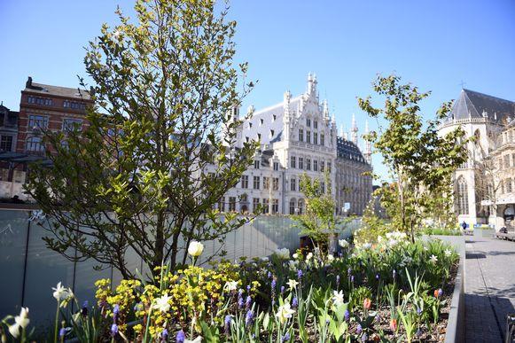 Bloemenpracht op het Rector De Somerplein in Leuven.