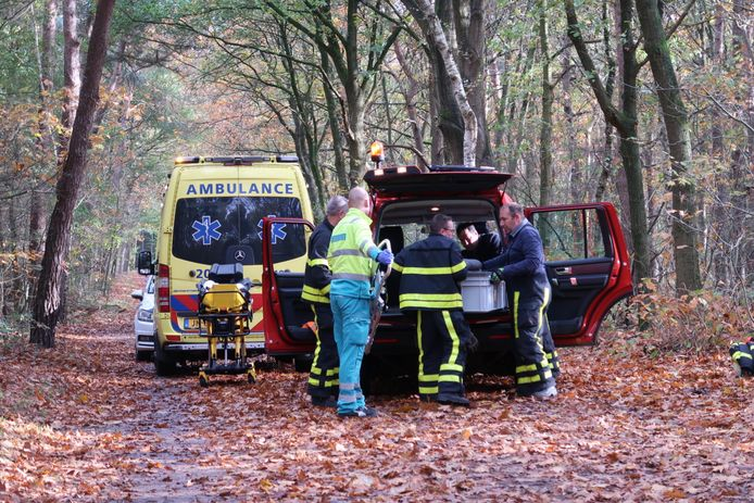 Mountainbiker gewond na valpartij in de bossen.