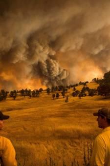 Klimaatverandering: 'Het is erger dan je denkt, veel erger'