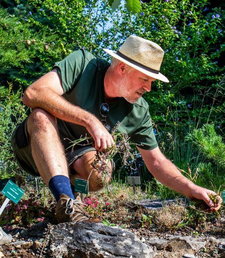 Hoe red je de tuin tijdens een hittegolf? Nou, niét door je gazon te sproeien. Dit zijn de tips