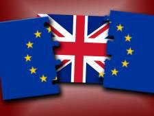 Tukkers onzeker, maar ook nuchter over Brexit