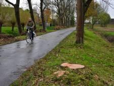 Bewoners Laantje van Middenhoeve in Dordrecht boos door gekapte bomen
