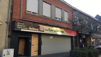 Politie treft cannabisplantage aan in winkelstraat Willebroek dankzij 'doordringende cannabisgeur'