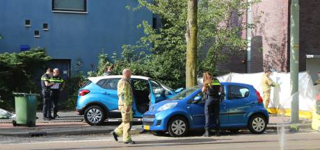 Automobilist gewond naar ziekenhuis na klap tegen boom op Dedemsvaartweg