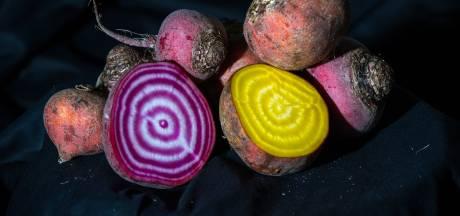 Tien tegen één dat jij deze groenten niet allemaal kent
