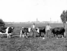 Oudere Hoornaren blikken met enige weemoed terug op tijd dat Den Hoorn nog een dorpje was
