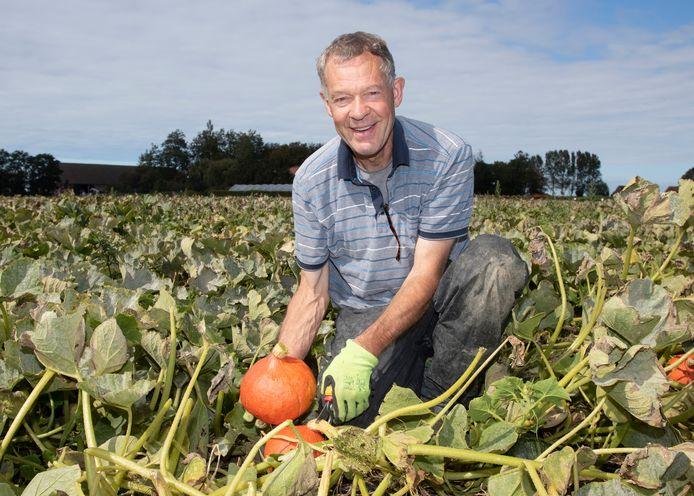 Paul van der Zweep oogst oranje eetbare pompoenen.