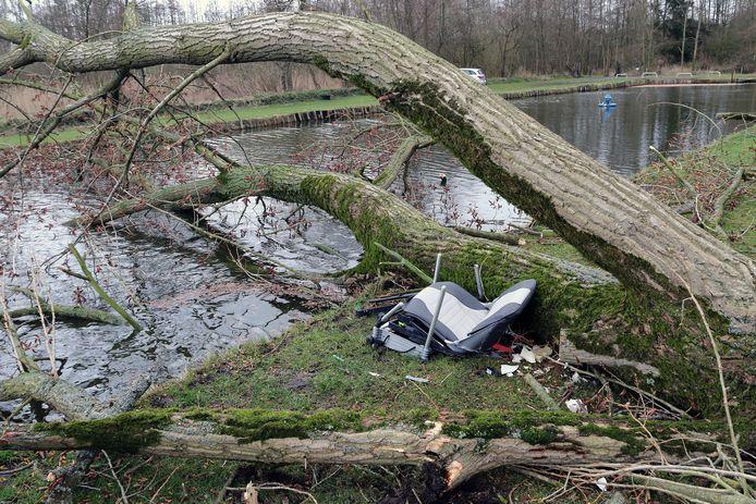 In Mol kwam een visser om het leven toen er een boom op hem viel.