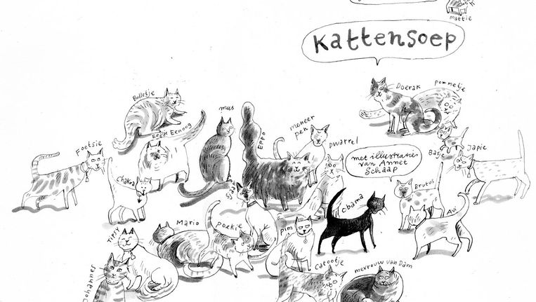 Met Kattensoep schreef Schotveld haar eigen poezenverhaal Beeld CPNB