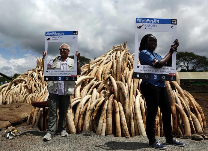 Actievoerders tegen stroperij om ivoor demonstreren bij een massa in beslag genomen slagtanden.