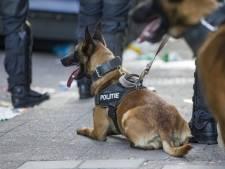 39-jarige man uit Den Bosch steelt kinderfiets, bespuugt agenten tijdens arrestatie