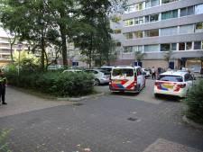 Meerdere mensen op de vuist in Delft