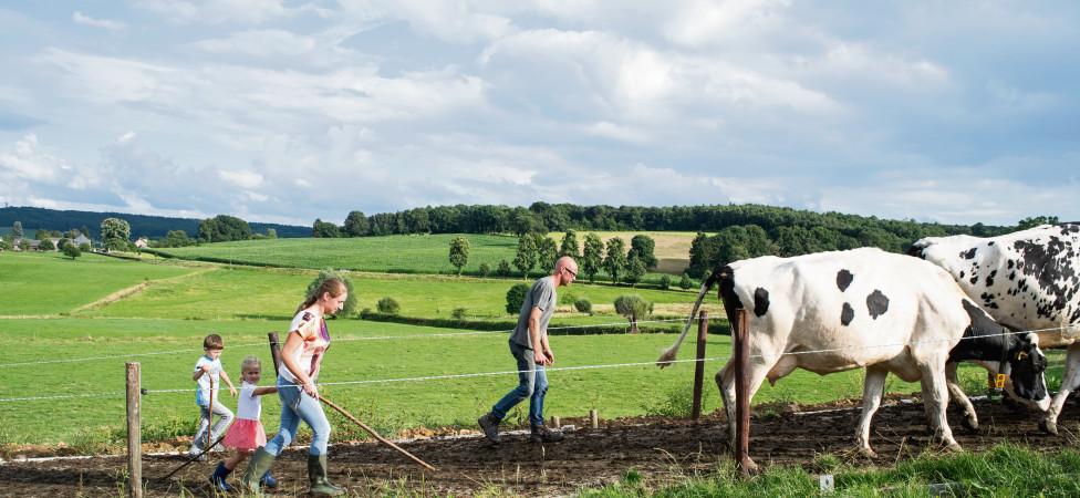 Het boerenbedrijf in beeld: beroepseer en klasseverschil
