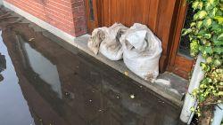 Zwaar onweer in Antwerpen: Kalmthout en Kapellen kondigen rampenplan af, campus palliatieve zorg ontruimd in Wuustwezel, straten blank in Ekeren en Brasschaat