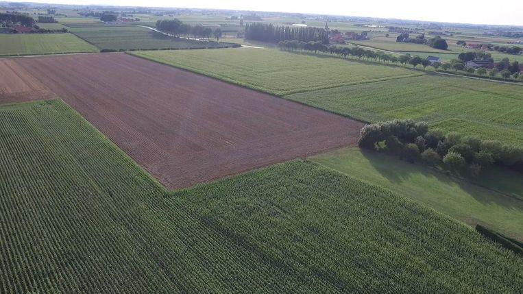 """Een deel van de expresweg zou dwars door deze velden lopen. Ook dat ziet het comité niet zitten. """"Om een minuut sneller van Veurne naar Ieper te raken, verliezen we vele hectaren landbouwgrond.""""."""