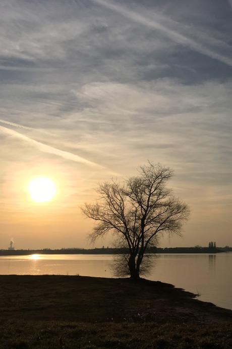 Warmste 16 februari ooit: dit zijn jullie mooiste foto's van deze 'lentedag'