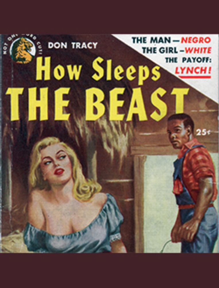 Een pulproman, waarin de zwarte man wordt neergezet als een verkrachter van witte vrouwen, als rechtvaardiging van de moordpartijen. Beeld Jim Crow Museum