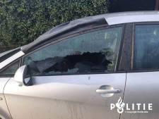 29 auto's in één nacht vernield in Edese wijken