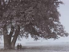 Bernard Hoetink fotografeerde het Twente van weleer: heimwee naar de 'oale groond'