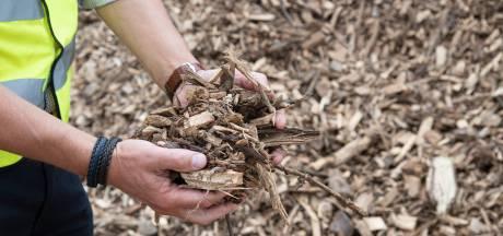 Provincie Utrecht wil gebruik van biomassa gaan beperken