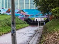 Tunnelwachten 'zeer, zeer verheugd' over aanhouding 'domme' straatrovers in Enschede