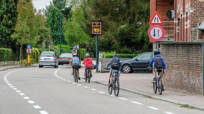 Fietsen in Vlaanderen: dit zijn de best scorende steden en gemeenten