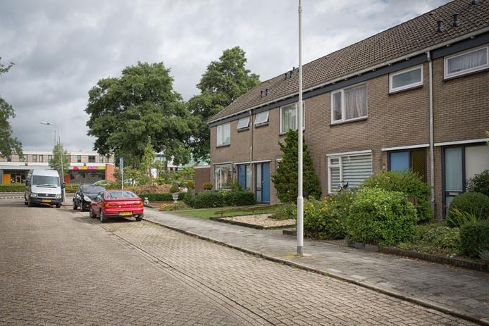 De Berkenstraat, waar Umaru werd overmeesterd.