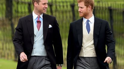 Mooi om te zien: prinsenbroers William en Harry zijn al jaren onafscheidelijk