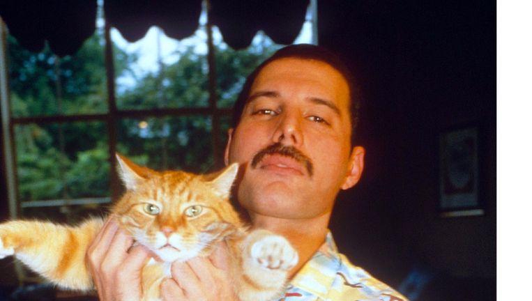 Freddy Mercury in 1988. Beeld Beeld uit de docu Freddie Mercury: The Great Pretender