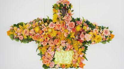 Nieuwe expo draait rond de hoody: waarom dit kledingstuk alle hypes overleeft en overtreft