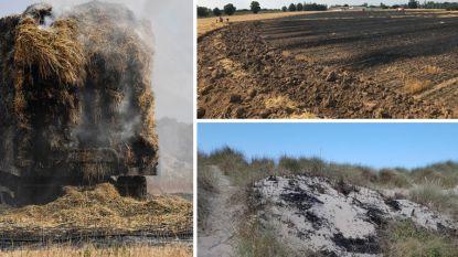 Hitte en droogte eisen hun tol: verschillende branden over heel Vlaanderen