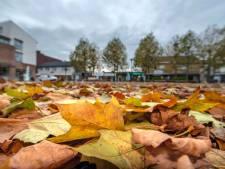 Bladafval centrum Beuningen vaker geveegd