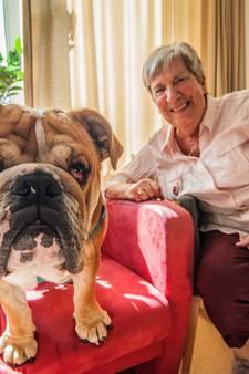 Hond Harry verovert harten van ouderen