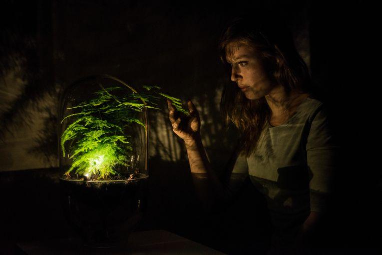 Living Light in het donker. Beeld Ermi van Oers