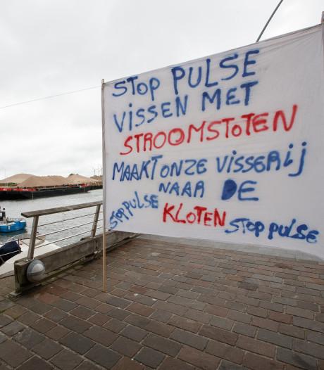 Vlaams verbod treft Zeeuwse pulsvissers