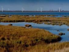 Groot deel van Zeeland moet landschapspark worden, maar niet alles gaat op slot