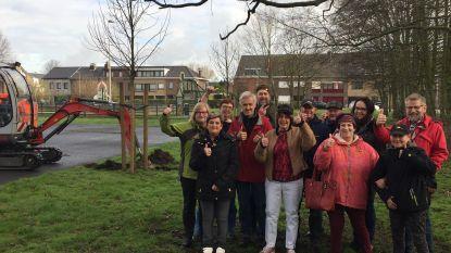 Pestboompjes verhuizen van Hoogbouwplein naar tuin 'Villa Wapiwi'