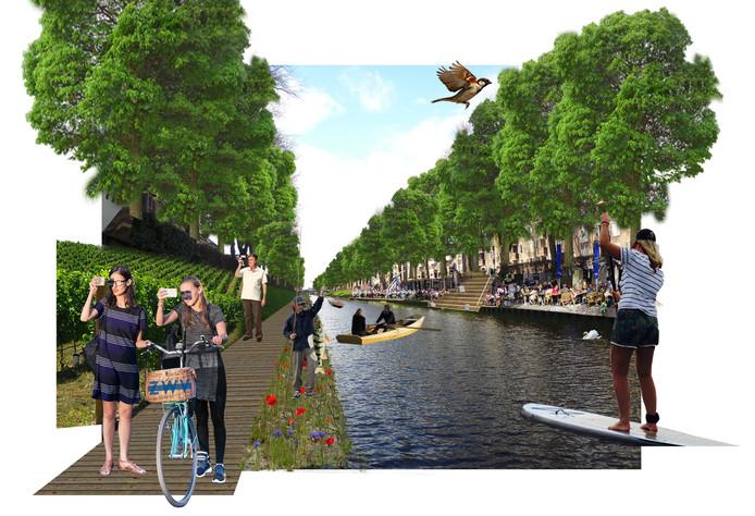 Een indruk van het Zuid-Willemspark in de stad