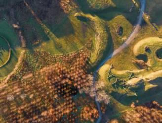 Hemelse dronebeelden van winters Rozekensbos