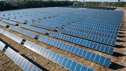 De energie- en milieusector boomt! Groei zelf mee in deze groene jobs